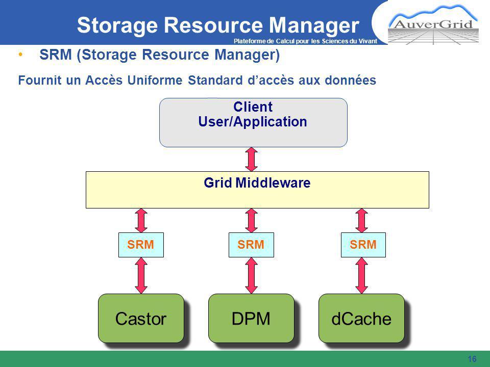 Plateforme de Calcul pour les Sciences du Vivant 16 SRM (Storage Resource Manager) Fournit un Accès Uniforme Standard d'accès aux données Client User/Application Grid Middleware SRM Castor dCache DPM Storage Resource Manager