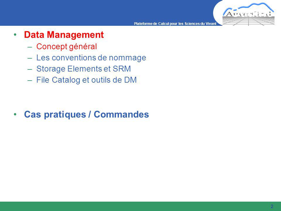 Plateforme de Calcul pour les Sciences du Vivant 2 Outline Data Management –Concept général –Les conventions de nommage –Storage Elements et SRM –File Catalog et outils de DM Cas pratiques / Commandes