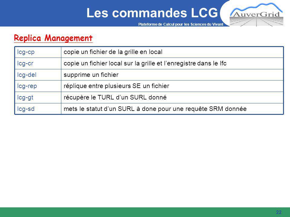 Plateforme de Calcul pour les Sciences du Vivant 22 Les commandes LCG Replica Management mets le statut d'un SURL à done pour une requête SRM donnéelcg-sd récupère le TURL d'un SURL donnélcg-gt réplique entre plusieurs SE un fichierlcg-rep supprime un fichierlcg-del copie un fichier local sur la grille et l'enregistre dans le lfclcg-cr copie un fichier de la grille en locallcg-cp