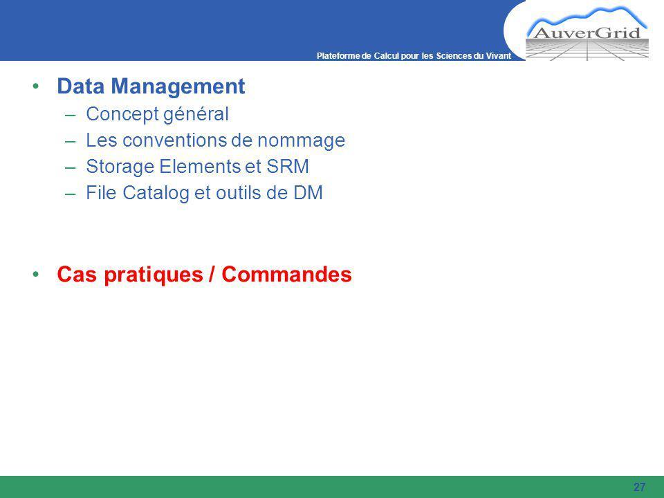 Plateforme de Calcul pour les Sciences du Vivant 27 Data Management –Concept général –Les conventions de nommage –Storage Elements et SRM –File Catalog et outils de DM Cas pratiques / Commandes