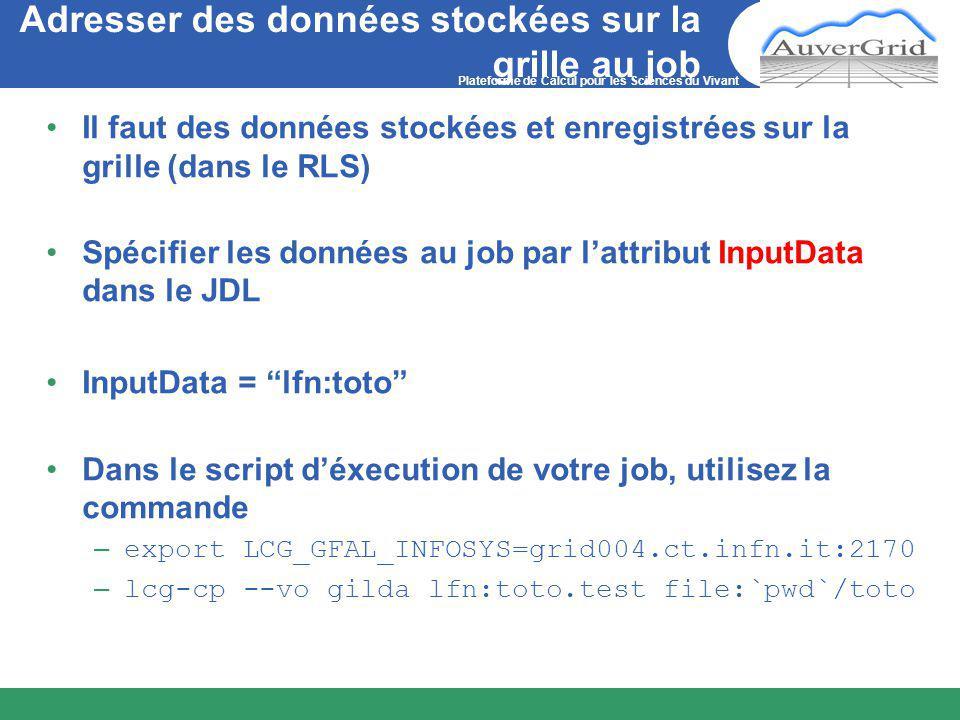 Plateforme de Calcul pour les Sciences du Vivant Adresser des données stockées sur la grille au job Il faut des données stockées et enregistrées sur la grille (dans le RLS) Spécifier les données au job par l'attribut InputData dans le JDL InputData = lfn:toto Dans le script d'éxecution de votre job, utilisez la commande – export LCG_GFAL_INFOSYS=grid004.ct.infn.it:2170 – lcg-cp --vo gilda lfn:toto.test file:`pwd`/toto