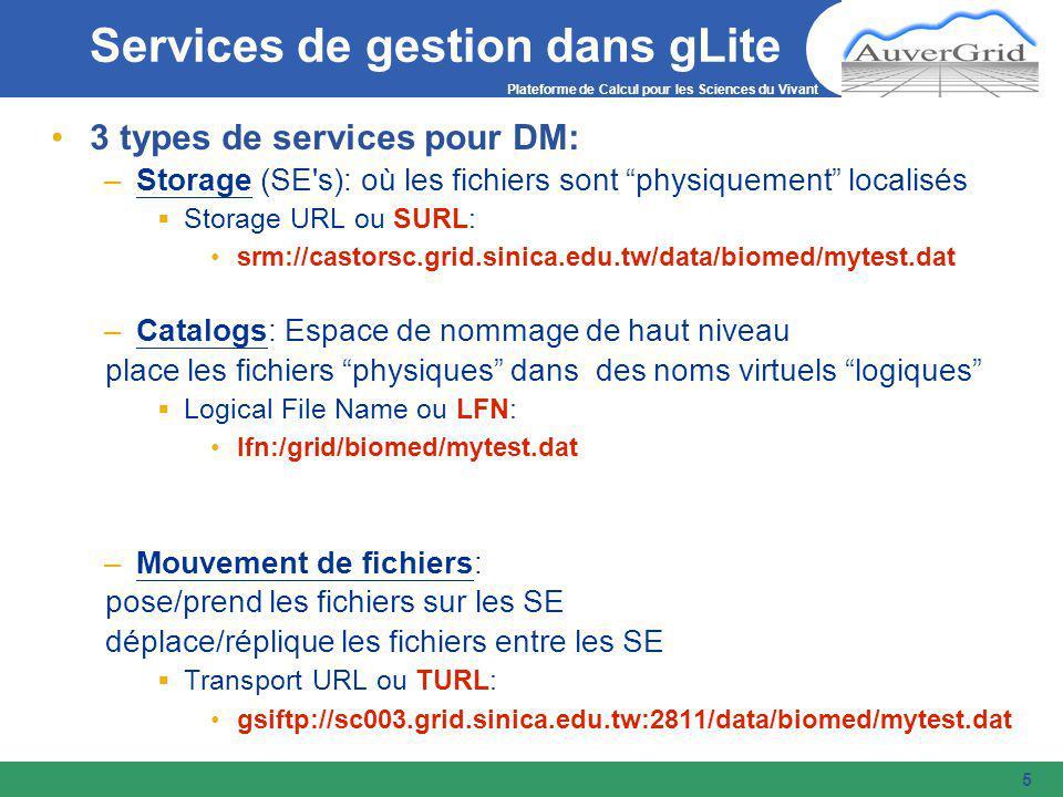Plateforme de Calcul pour les Sciences du Vivant 5 3 types de services pour DM: –Storage (SE s): où les fichiers sont physiquement localisés  Storage URL ou SURL: srm://castorsc.grid.sinica.edu.tw/data/biomed/mytest.dat –Catalogs: Espace de nommage de haut niveau place les fichiers physiques dans des noms virtuels logiques  Logical File Name ou LFN: lfn:/grid/biomed/mytest.dat –Mouvement de fichiers: pose/prend les fichiers sur les SE déplace/réplique les fichiers entre les SE  Transport URL ou TURL: gsiftp://sc003.grid.sinica.edu.tw:2811/data/biomed/mytest.dat Services de gestion dans gLite