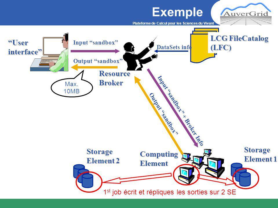 Plateforme de Calcul pour les Sciences du Vivant Récupérer des données de la grille Copier des données grille => UI –Mettre le fichier toto avec le LFN toto.test sur l'UI dans /myhome/ lcg-cp --vo gilda lfn:toto.test file:/myhome/toto