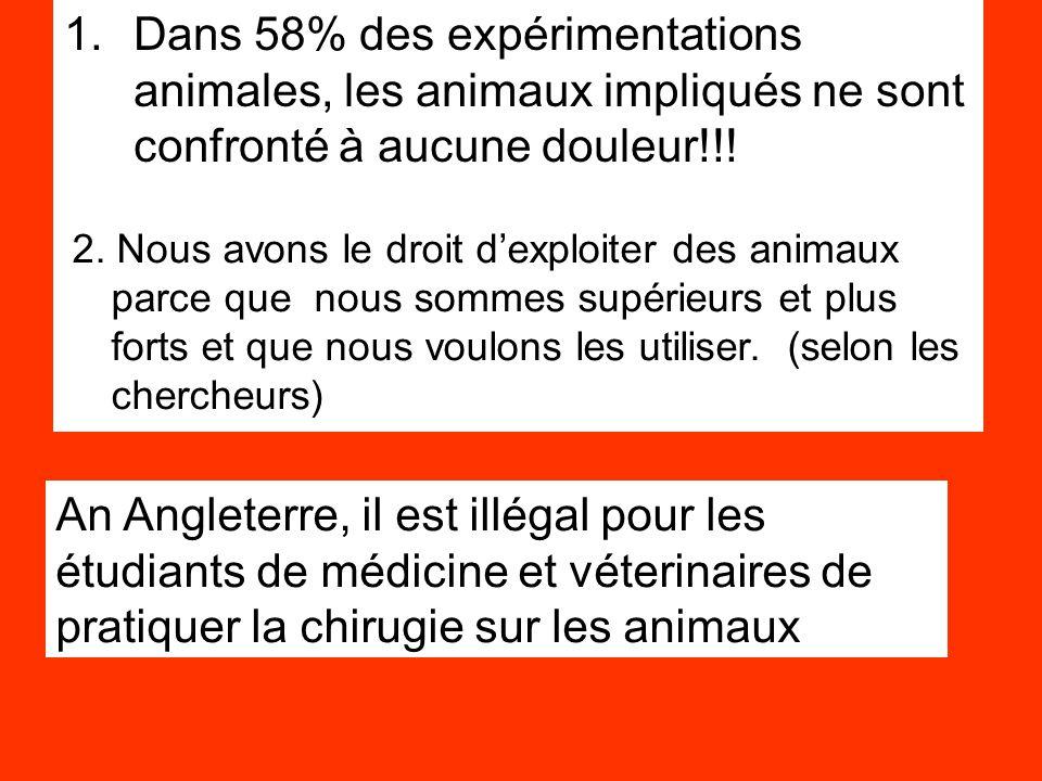 1.Dans 58% des expérimentations animales, les animaux impliqués ne sont confronté à aucune douleur!!! 2. Nous avons le droit d'exploiter des animaux p