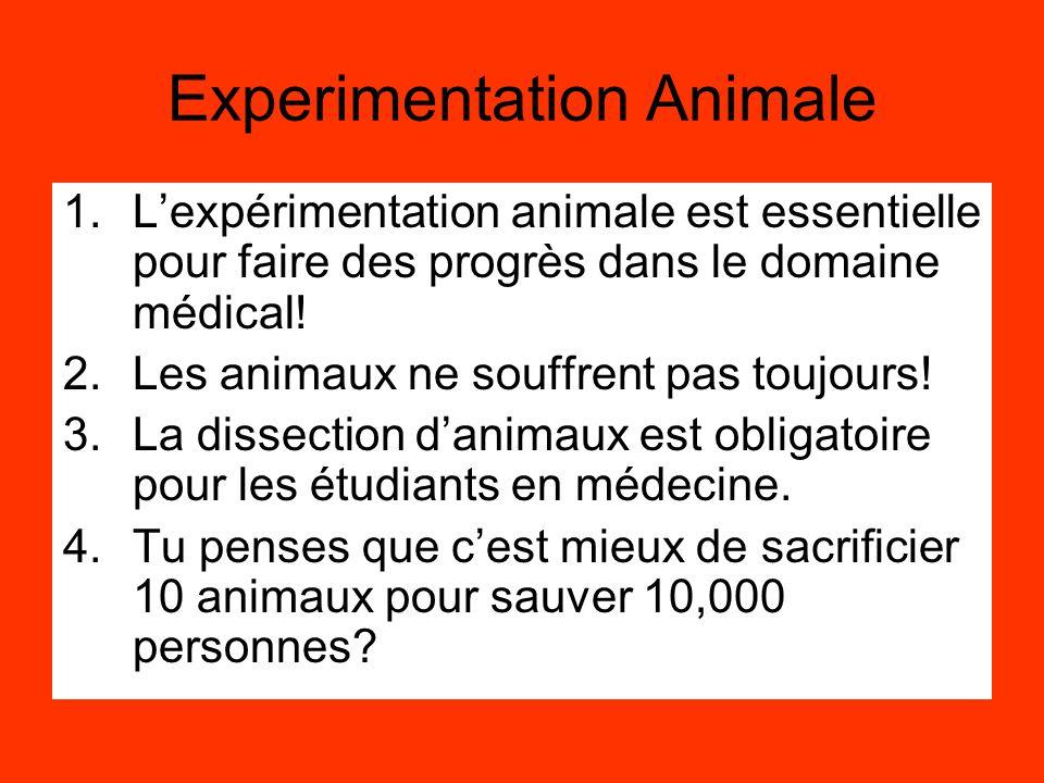 Experimentation Animale 1.L'expérimentation animale est essentielle pour faire des progrès dans le domaine médical! 2.Les animaux ne souffrent pas tou