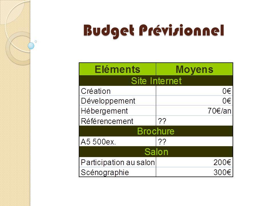 Budget Prévisionnel