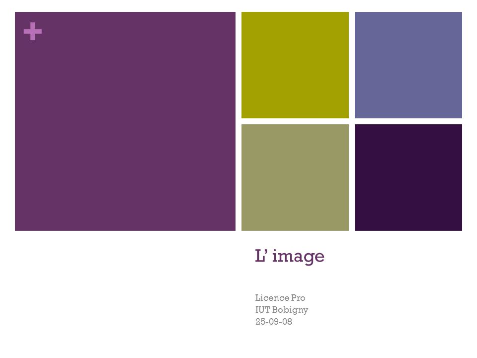 + L' image Licence Pro IUT Bobigny 25-09-08