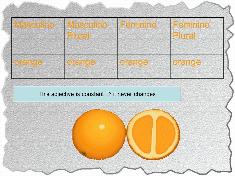 MasculineMasculine Plural FeminineFeminine Plural orange This adjective is constant  it never changes