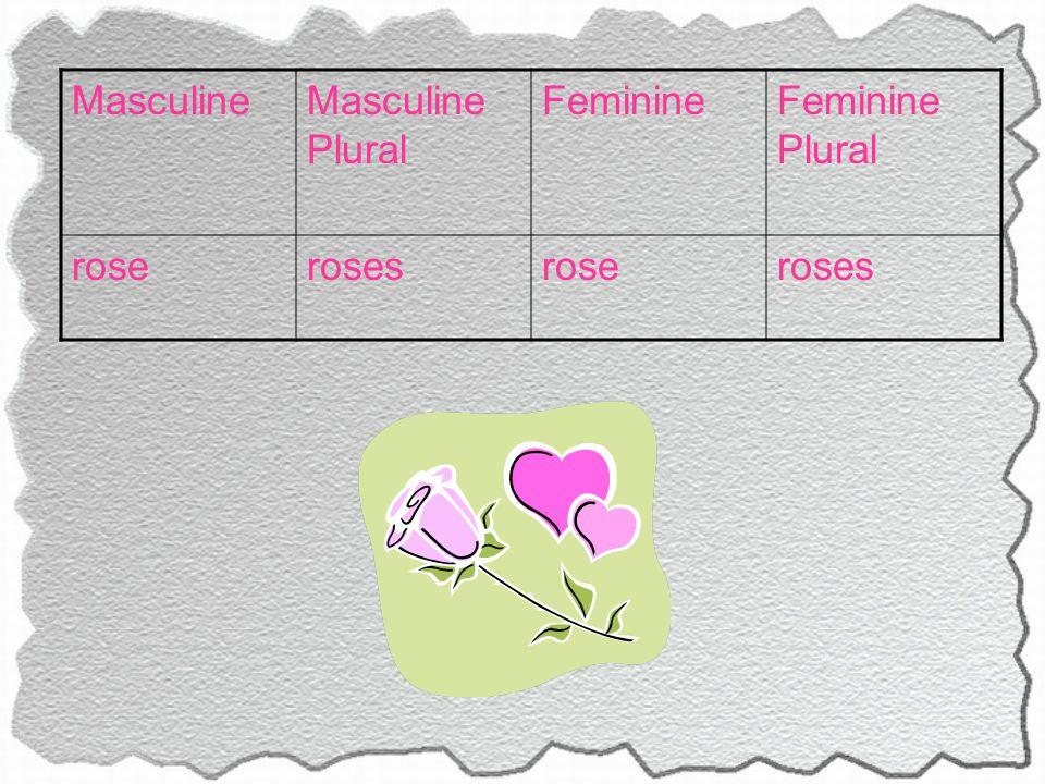 MasculineMasculine Plural FeminineFeminine Plural roserosesroseroses