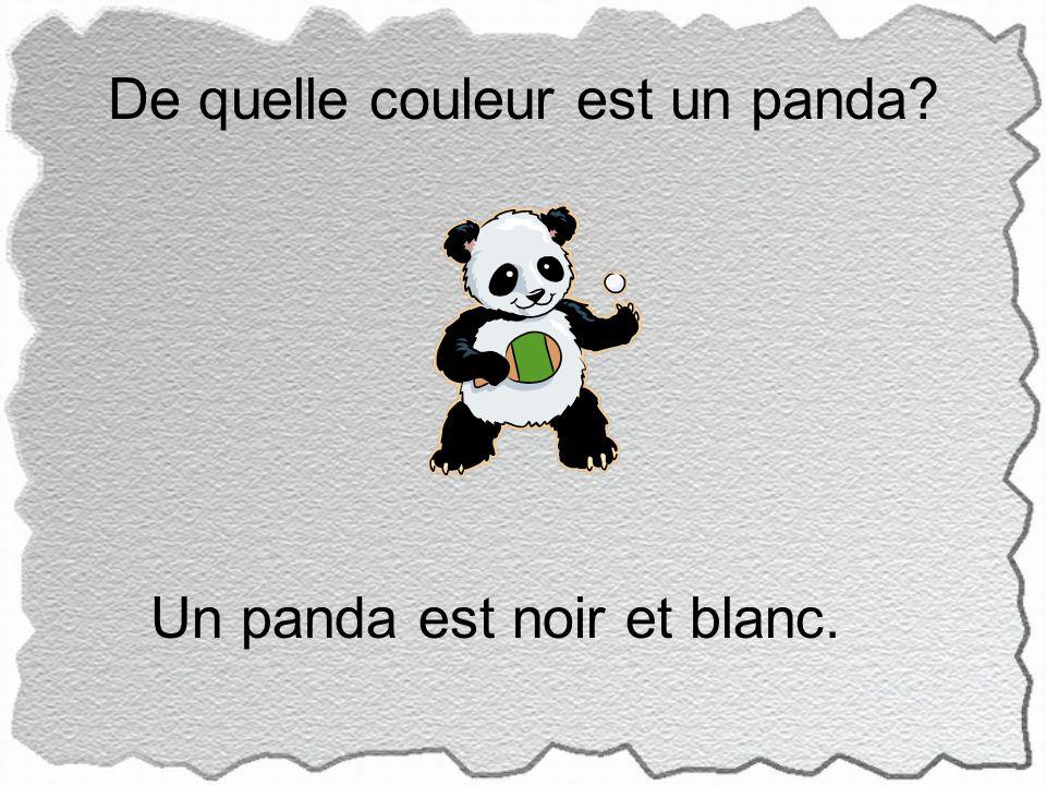 De quelle couleur est un panda Un panda est noir et blanc.