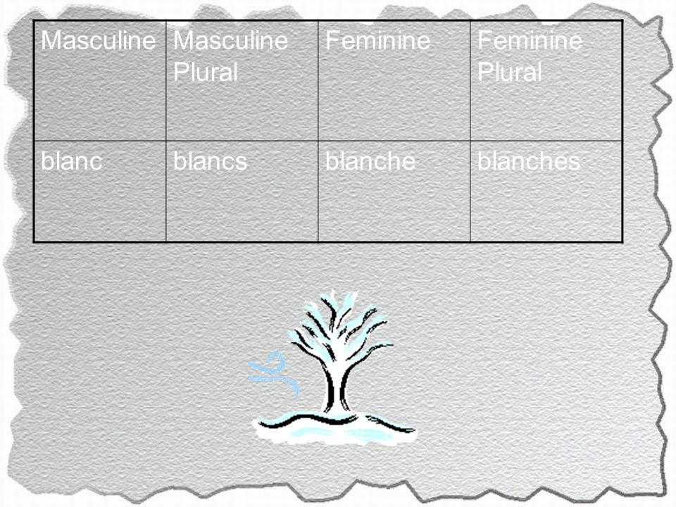 MasculineMasculine Plural FeminineFeminine Plural blancblancsblancheblanches