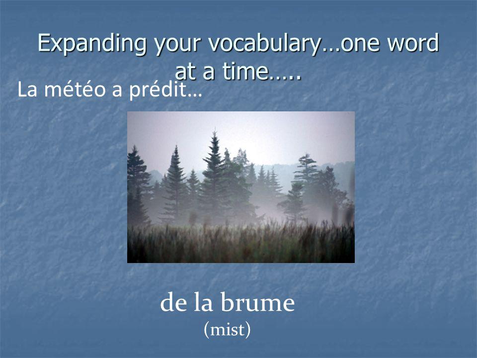 Expanding your vocabulary…one word at a time….. La météo a prédit… du brouillard (fog)