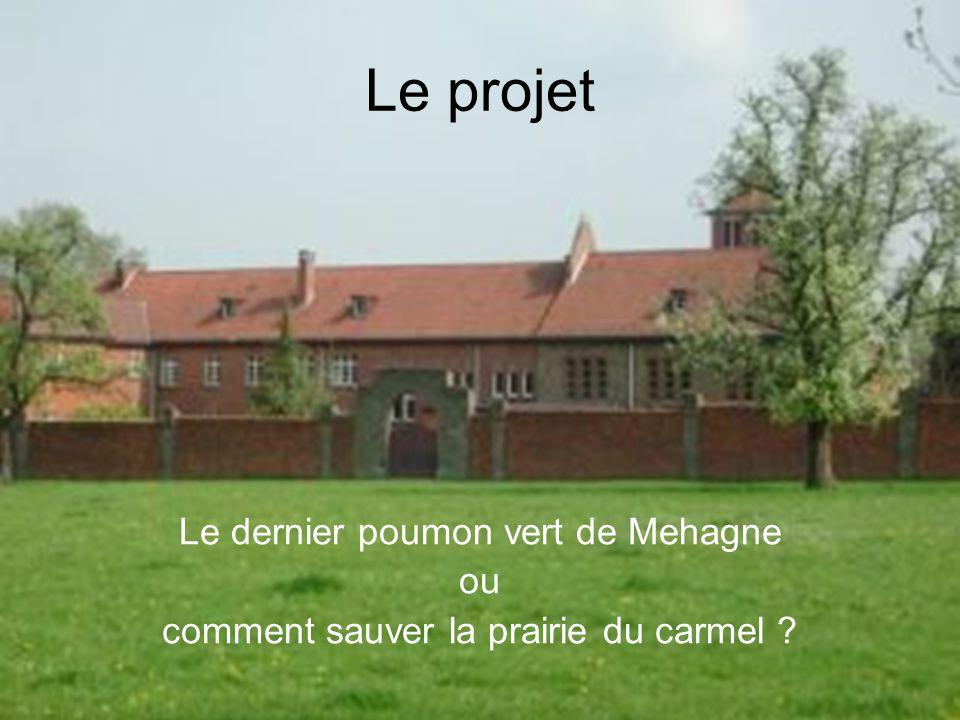 03-09-08 1ère réunion d information Mehagne, c est notre histoire4 Le projet Le dernier poumon vert de Mehagne ou comment sauver la prairie du carmel