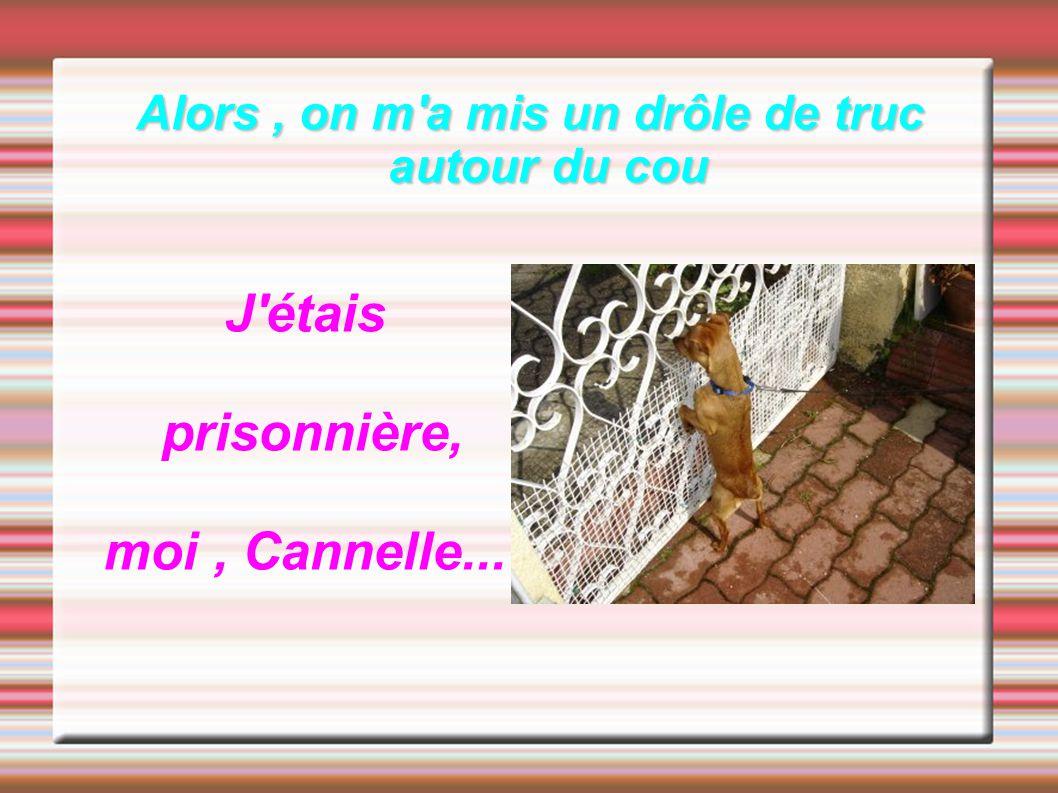 Alors, on m'a mis un drôle de truc autour du cou J'étais prisonnière, moi, Cannelle...