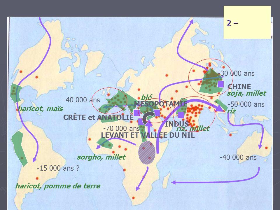 -70 000 ans -50 000 ans -40 000 ans -30 000 ans -15 000 ans ? 2 – CHINE INDUS haricot, maïs haricot, pomme de terre riz, millet riz soja, millet sorgh
