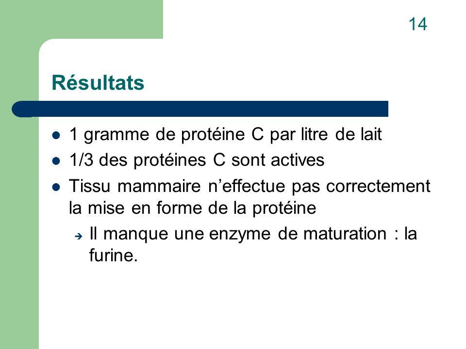 Résultats 1 gramme de protéine C par litre de lait 1/3 des protéines C sont actives Tissu mammaire n'effectue pas correctement la mise en forme de la protéine  Il manque une enzyme de maturation : la furine.