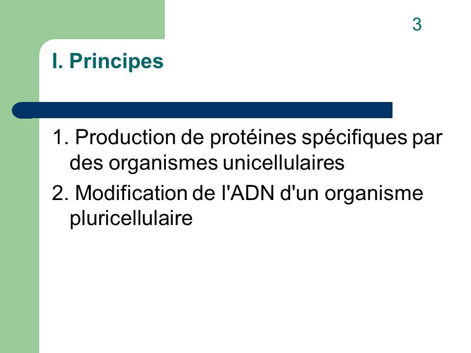 I. Principes 1. Production de protéines spécifiques par des organismes unicellulaires 2.