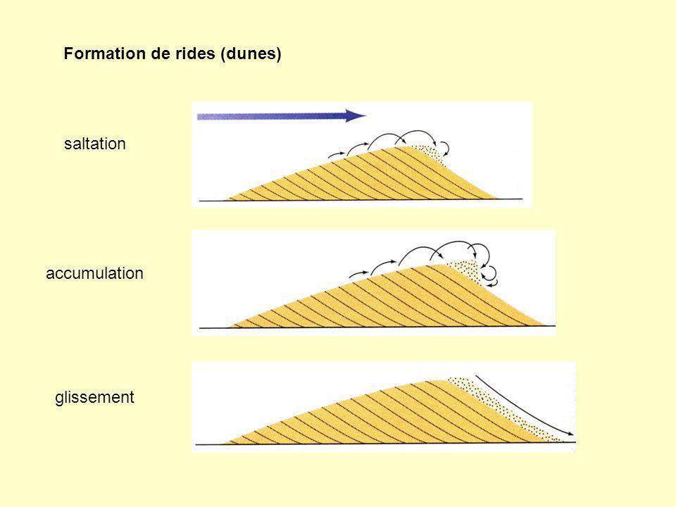 Formation de rides (dunes) saltation accumulation glissement