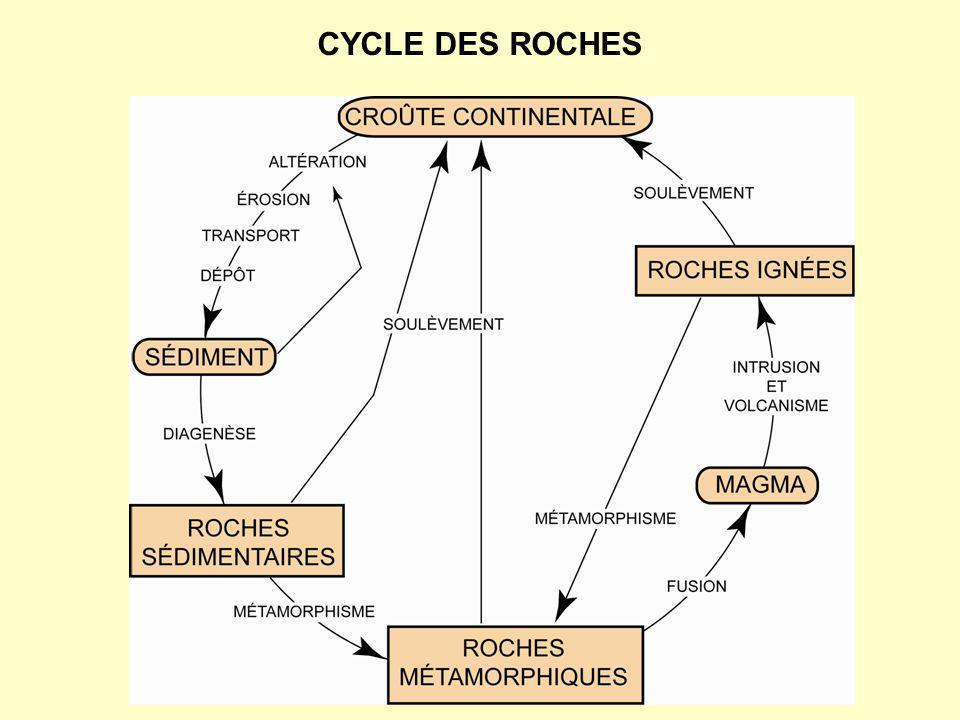 bloc / gravier ---> conglomérat ou brèche sable ---> grès silt ---> shale argile ---> argilite Roches sédimentaires détritiques Roches sédimentaires chimiques Roches sédimentaires biogéniques