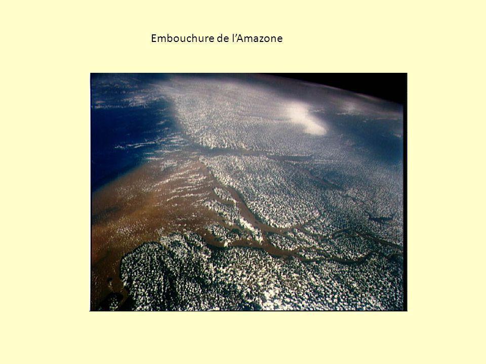 Embouchure de l'Amazone