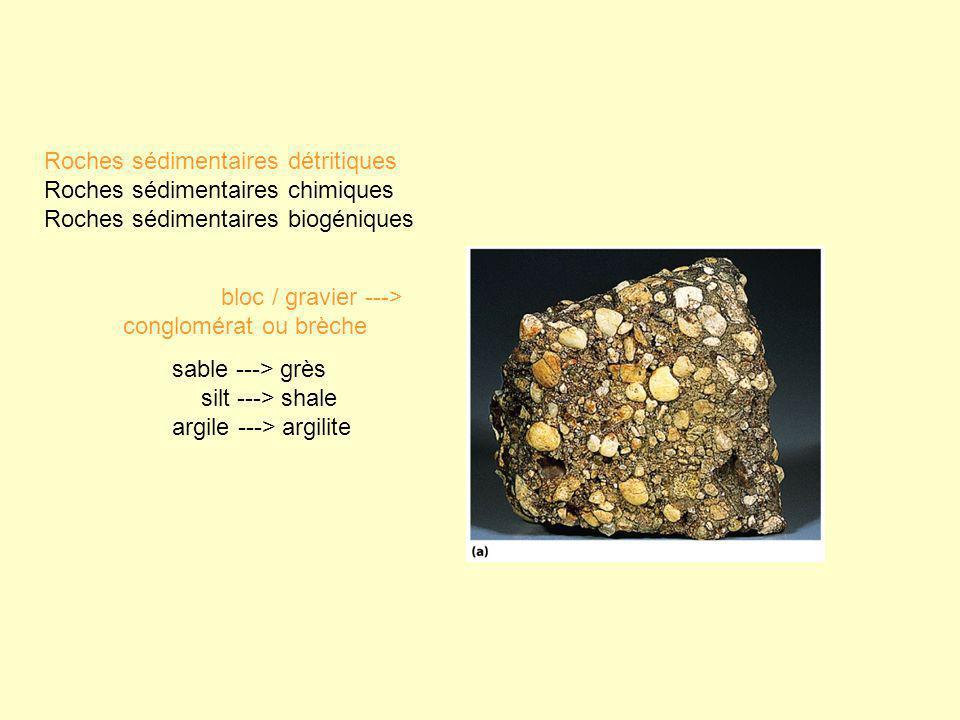 Roches sédimentaires détritiques Roches sédimentaires chimiques Roches sédimentaires biogéniques bloc / gravier ---> conglomérat ou brèche sable --->