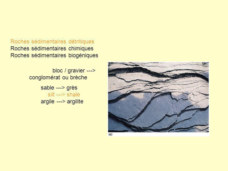 bloc / gravier ---> conglomérat ou brèche sable ---> grès silt ---> shale argile ---> argilite Roches sédimentaires détritiques Roches sédimentaires c