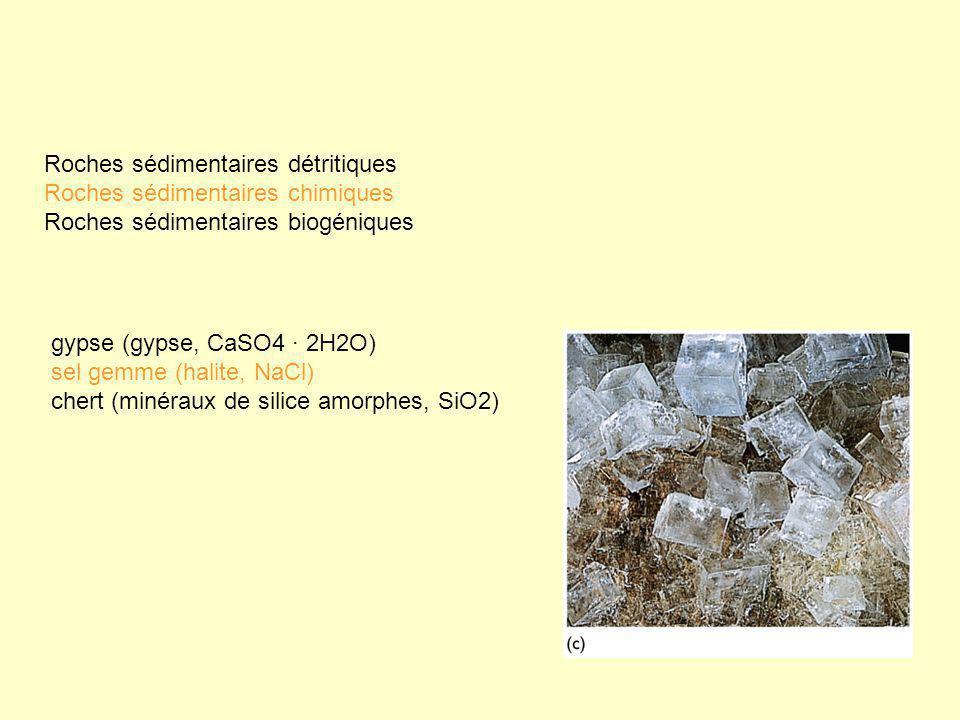 gypse (gypse, CaSO4 · 2H2O) sel gemme (halite, NaCl) chert (minéraux de silice amorphes, SiO2) Roches sédimentaires détritiques Roches sédimentaires c