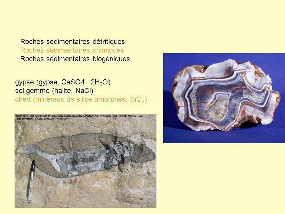 gypse (gypse, CaSO4 · 2H 2 O) sel gemme (halite, NaCl) chert (minéraux de silice amorphes, SiO 2 ) Roches sédimentaires détritiques Roches sédimentair