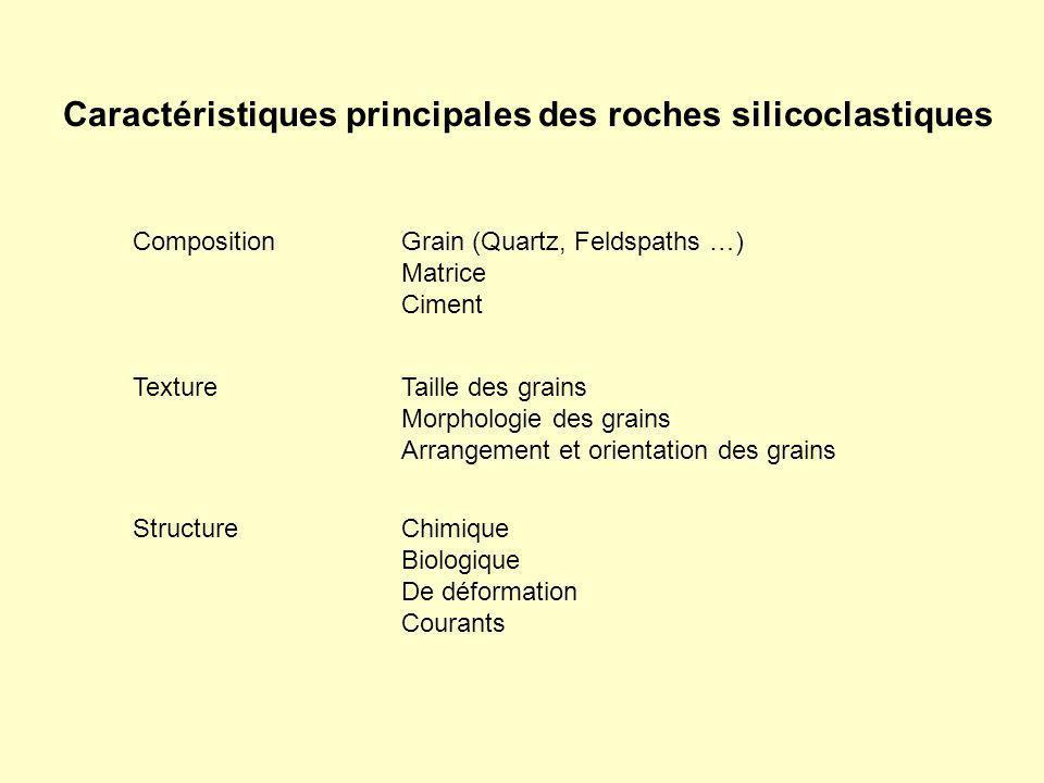 Caractéristiques principales des roches silicoclastiques Composition Texture Structure Taille des grains Morphologie des grains Arrangement et orienta
