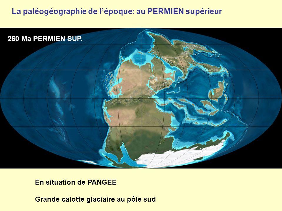 260 Ma PERMIEN SUP. En situation de PANGEE Grande calotte glaciaire au pôle sud La paléogéographie de l'époque: au PERMIEN supérieur