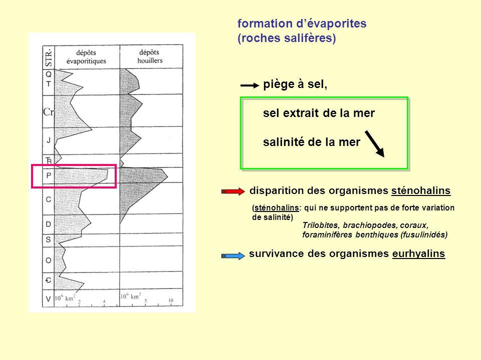 formation d'évaporites (roches salifères) piège à sel, sel extrait de la mer salinité de la mer disparition des organismes sténohalins (sténohalins: q