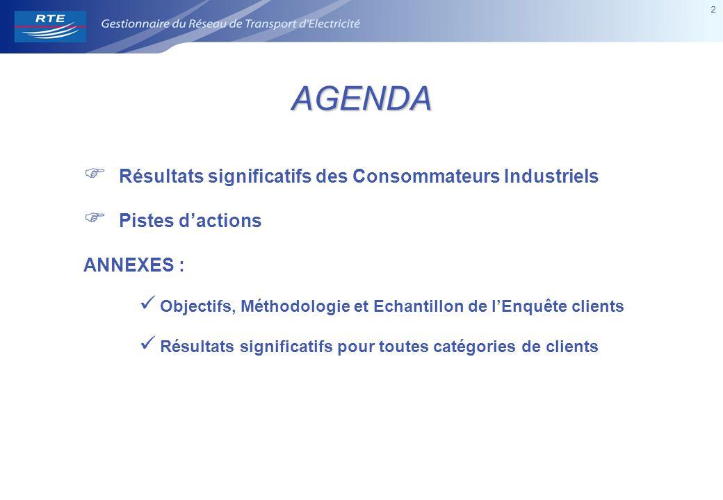 2 2AGENDA  Résultats significatifs des Consommateurs Industriels  Pistes d'actions ANNEXES : Objectifs, Méthodologie et Echantillon de l'Enquête cli