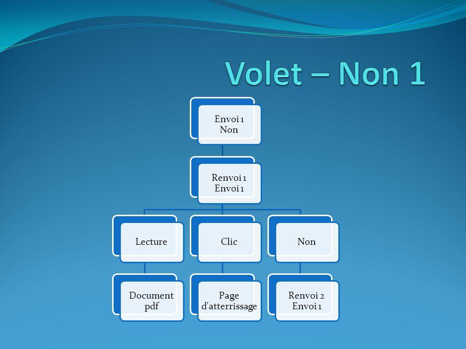 Envoi 1 Non Renvoi 1 Envoi 1 Lecture Document pdf Clic Page d atterrissage Non Renvoi 2 Envoi 1