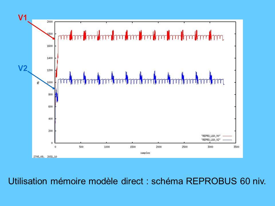Utilisation mémoire modèle direct : schéma REPROBUS 60 niv. V2 V1