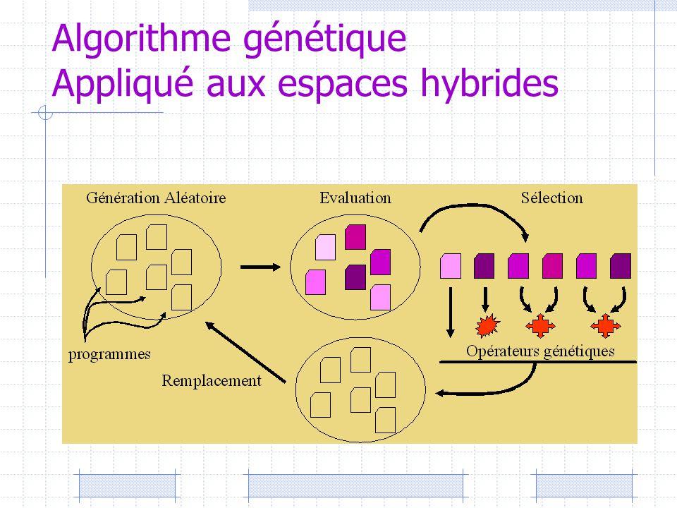 Algorithme génétique Appliqué aux espaces hybrides