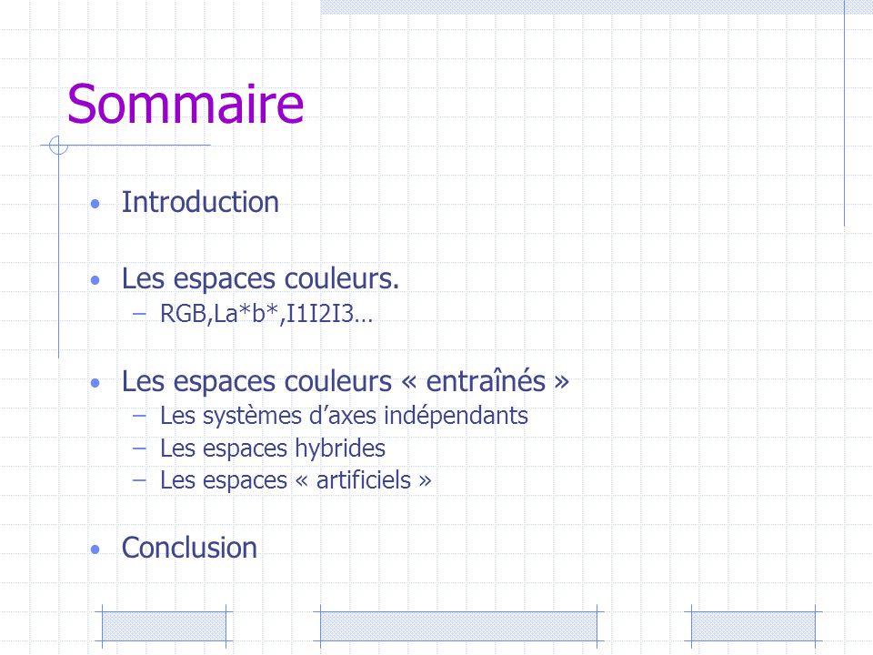 Sommaire Introduction Les espaces couleurs. –RGB,La*b*,I1I2I3… Les espaces couleurs « entraînés » –Les systèmes d'axes indépendants –Les espaces hybri