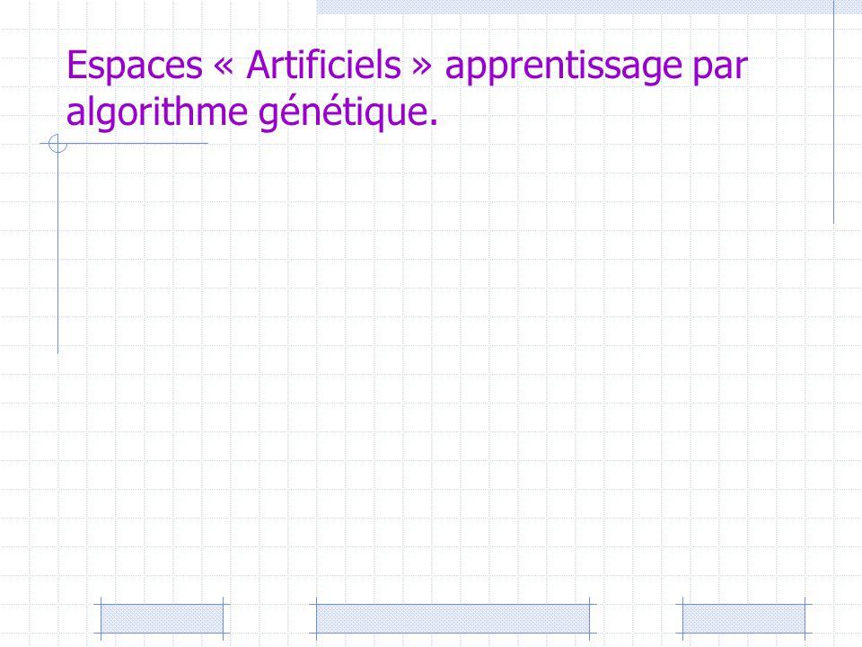 Espaces « Artificiels » apprentissage par algorithme génétique.