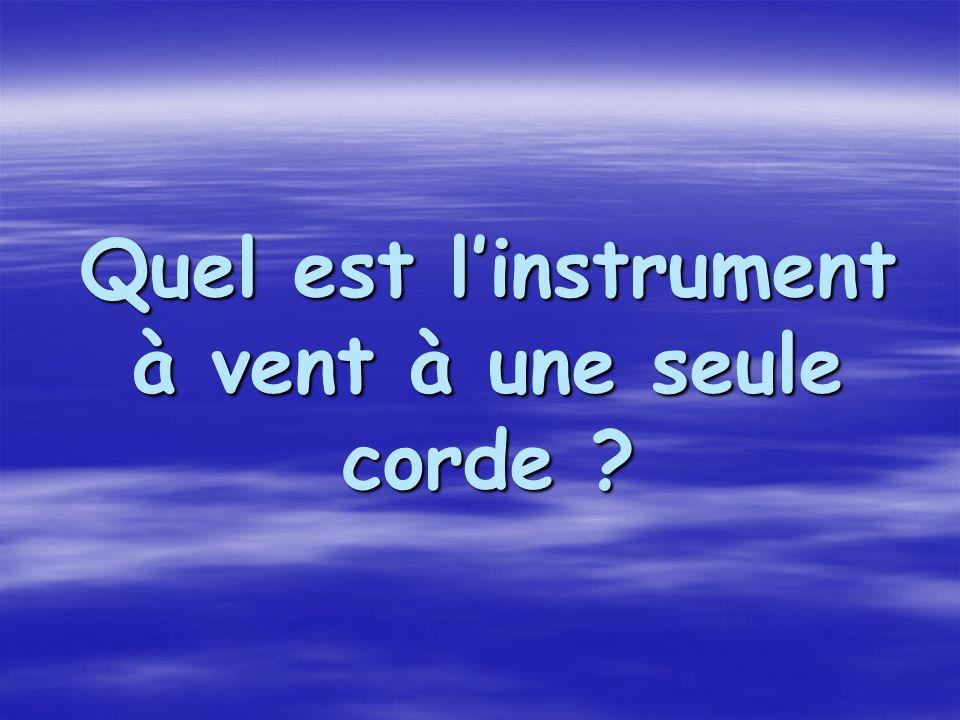 Quel est l'instrument à vent à une seule corde ?