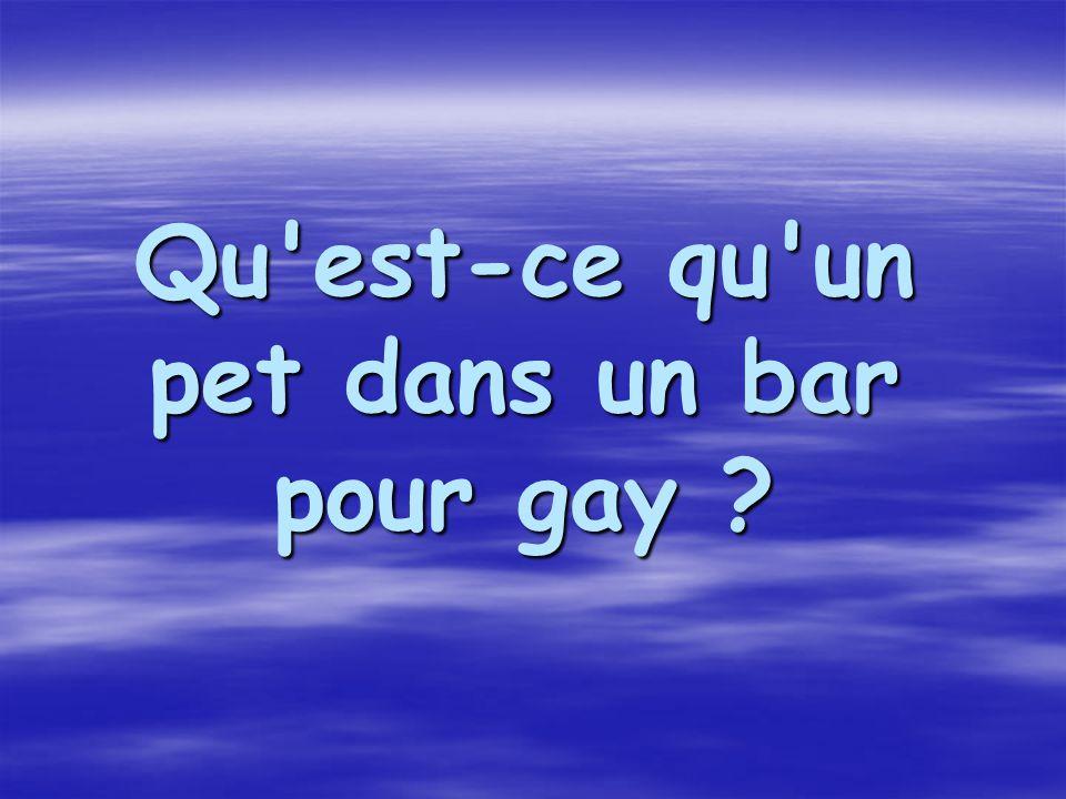 Qu'est-ce qu'un pet dans un bar pour gay ?