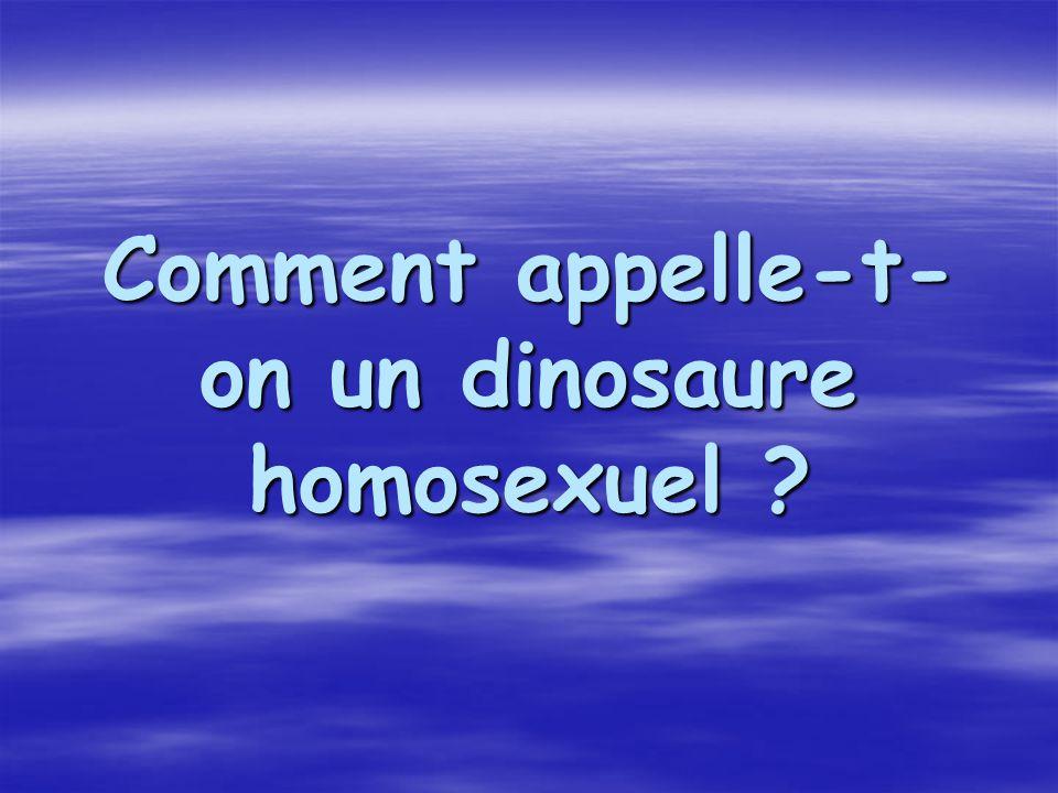 Comment appelle-t- on un dinosaure homosexuel ?