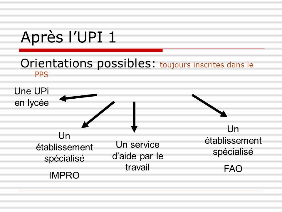 Après l'UPI 1 Orientations possibles: toujours inscrites dans le PPS Un établissement spécialisé IMPRO Un service d'aide par le travail Un établissement spécialisé FAO Une UPi en lycée