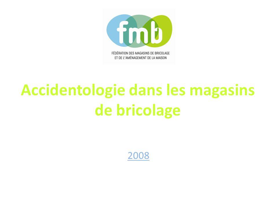 Accidentologie dans les magasins de bricolage 2008