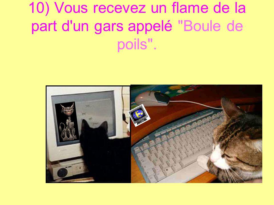 10 preuves que votre chat a découvert votre mot de passe Internet… Et qu'il s'en sert !