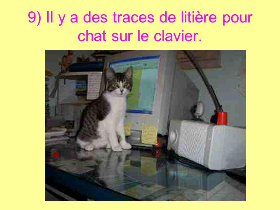 9) Il y a des traces de litière pour chat sur le clavier.