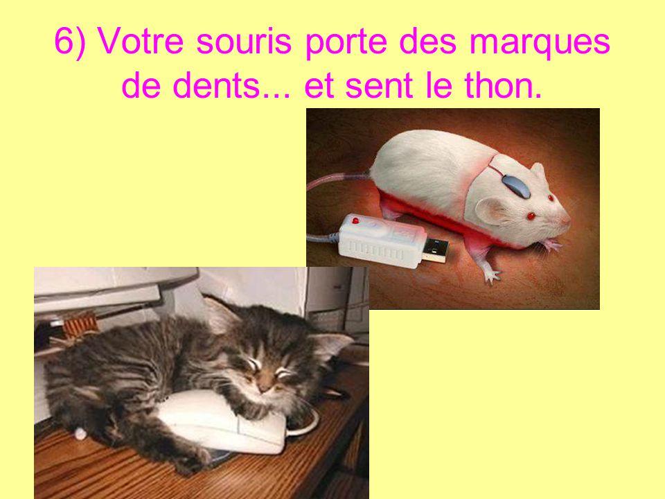 6) Votre souris porte des marques de dents... et sent le thon.