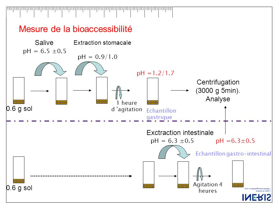 0.6 g sol Salive pH = 6.5 ±0.5 Extraction stomacale pH = 0.9/1.0 1 heure d 'agitation pH =1.2/1.7 Exctraction intestinale Agitation 4 heures pH =6.3±0.5 Centrifugation (3000 g 5min).