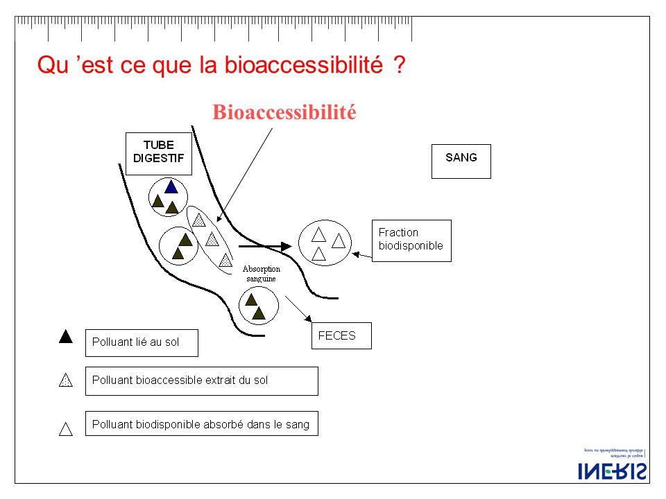 Qu 'est ce que la bioaccessibilité ? Bioaccessibilité