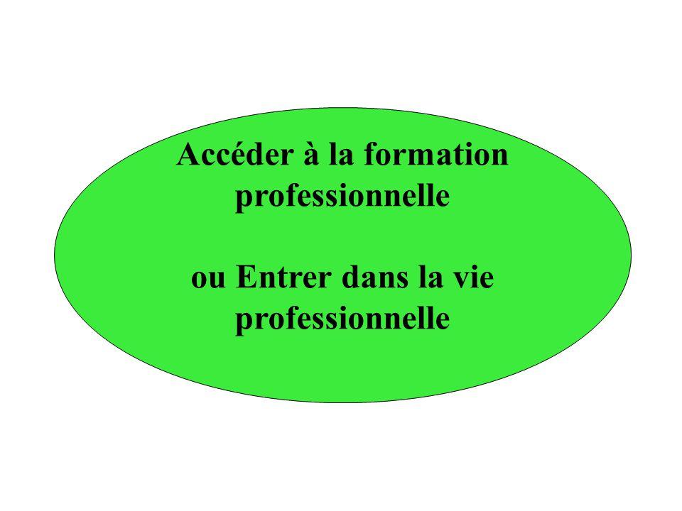 Accéder à la formation professionnelle ou Entrer dans la vie professionnelle