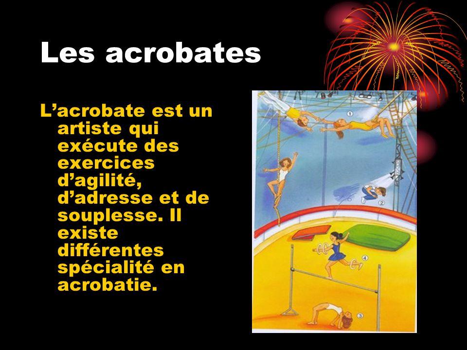 Parmi les acrobates, on distingue : les acrobates aériens, qui font des numéros dans les airs les sauteurs, qui font de la voltige au sol, les contorsionnistes, qui se plient dans tous les sens, les funambules, qui peuvent se déplacer sur une corde tendue.