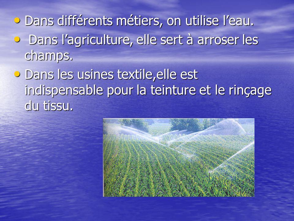 Dans différents métiers, on utilise l'eau. Dans différents métiers, on utilise l'eau. Dans l'agriculture, elle sert à arroser les champs. Dans l'agric
